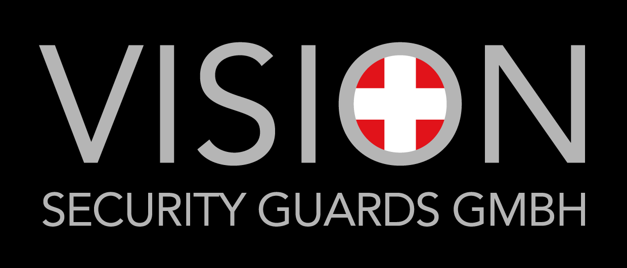 Vision-Security Logo